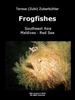 Frogfishes (Southeast Asia, Maldives, Red Sea)